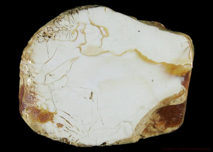 Костяной янтарь