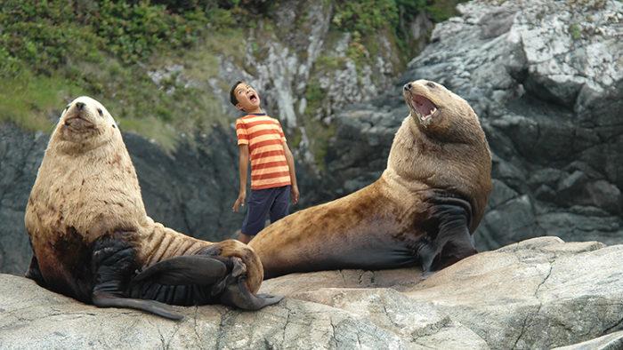 Интересные факты о северном морском льве